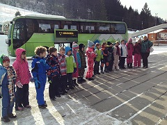 slika busa